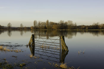Council calls for clarity over funding for Somerset floods authority image