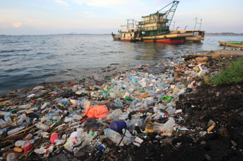 Council cleared of exporting plastic waste to Malaysia image