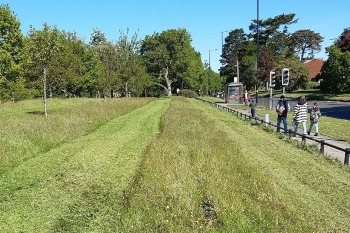 Council mows grass in two metre channels to promote social distancing image