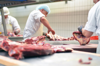 Council to stop supplying non-stunned halal meat in schools  image