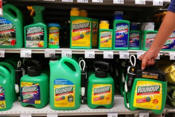Councils face calls to ban dangerous weedkiller image
