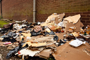 Councils get new powers to seize waste crime vehicles image
