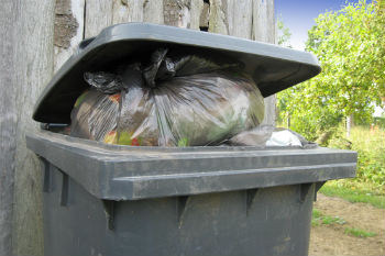 Councils three weekly bin collection could cost jobs warns union image