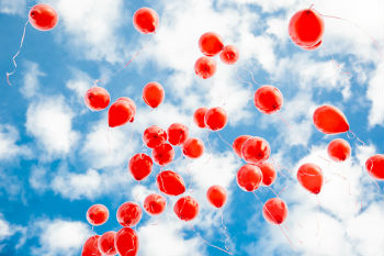Councils urged to ban balloon releases image
