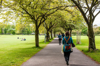 Edinburgh council announces aim to be a 'million tree city' image
