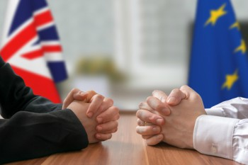 Local government and Brexit: a steady hand is needed image