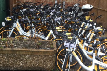 London borough seizes rental bikes  image