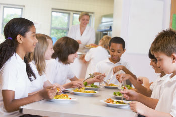 MPs urged to support take up of free school dinners image