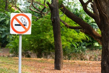 Parks should be 'no smoking zones' to protect children, experts say image