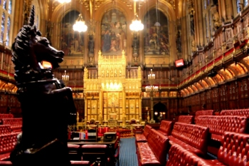 Peers call for public service reform to improve resilience image