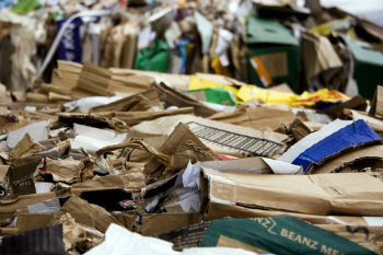 Recycling rates could be boosted by fraud, says auditors image