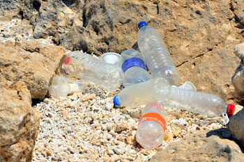 Recycling scheme to tackle plastic bottle waste  image