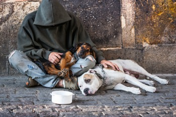 Rough sleeping to rise by three quarters in next decade warns charity image