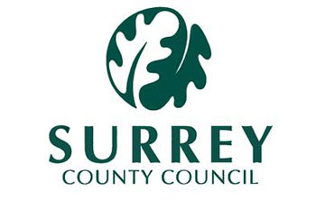 Surrey wins best council website award image