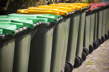 Two councils share management of environmental services image
